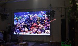 Màn hình LED Full Color P3 trong nhà tại Trống Đồng Linh Đàm
