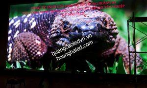 Làm biển LED giá rẻ tại Hà Nội LH: 0986774223 màn hình LED P3.91 trong nhà 2
